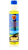 Жидкость омывателя стекла летняя Элтранс концентрат 1:100 250мл